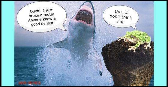 Jumping jaws needs dentist